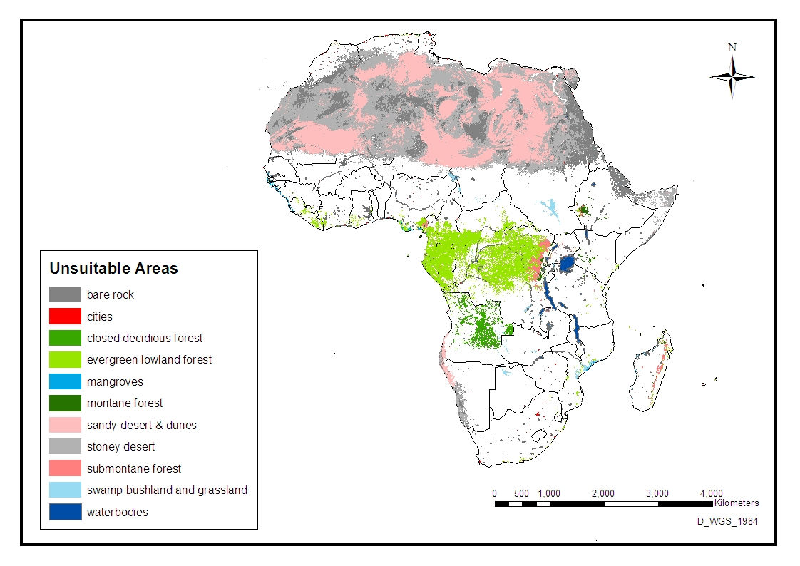 COMPETE   Competence Platform for Bioenergy in Arid and Semi arid
